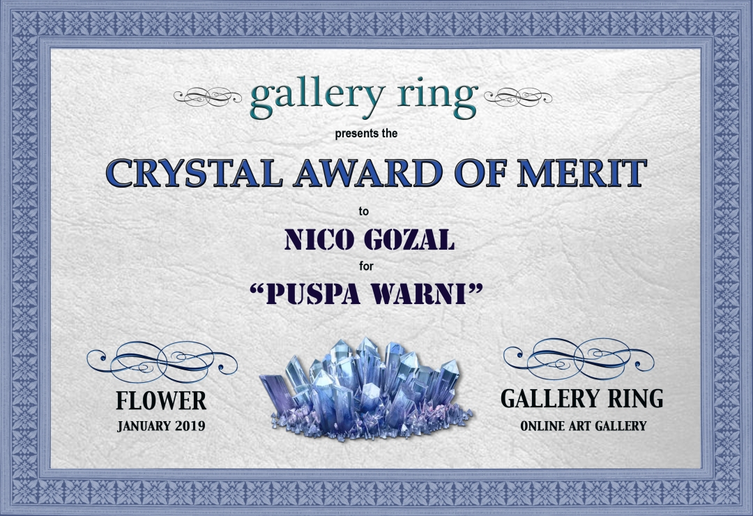 crystal award of merit-certificate-ng